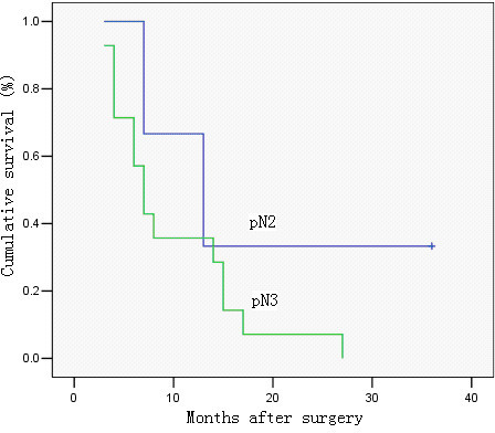 Survival curve of cases with metastatic lymph node ratio > 80%, in relation to pN category. No significant difference was observed in cumulative survival rates after surgery between the two groups (pN2 and pN3) (P = 0.224; Kaplan-Meier and log-rank test).