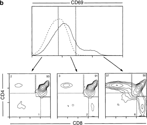CD4+CD8+ thymocytes are heterogeneous for expression of  CD5 and CD69. Freshly isolated thymocytes from B6 mice were analyzed by three color flow cytometry for surface expression of CD4, CD8  and CD5 (a) or CD69 (b). Gates subdividing cells into low, intermediate  and high expression of CD5 (a) or CD69 (b) are indicated. Contour plots  displaying CD4 and CD8 expression of cells in each gate are shown below each gate and the frequency of cells falling into CD4+CD8+,  CD4−CD8+ and CD4+CD8− subpopulations are indicated. Solid line indicates CD5 or CD69 staining and dashed line indicates negative control  (Leu 4) staining.