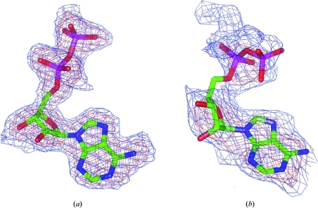 Examples of density maps with different values of the real-space map correlation coefficient (RSMCC). The ligand adenosinediphosphate is shown as from the PDB entries 1in7 with an RSMCC of 93% (a) and 1hw8 with an RSMCC of 69% (b). The maps are contoured at 0.06 e Å−3 (blue) and 0.15 e Å−3 (brown).