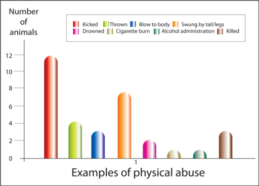 Forms of physical abuse experienced by animals in households, where concurrent violence to the woman by her partner occurred.