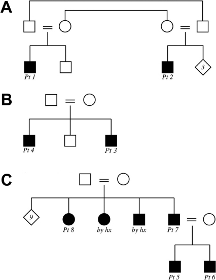 Pedigrees of the families. The pedigrees for Family 1 (A), Family 2 (B), and Family 3 (C) are shown. Pt: patient; by hx: affected by history but not available for the study.