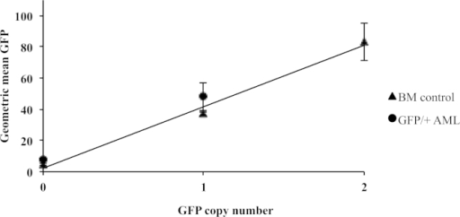 Supplementary Figure 1. Correlation between geometric mean of GFP expression and GFP copy number in unirradiated BM cells and AMLs. BM: Wild type = 0 GFP copies, GFP +/− = one GFP copy and GFP +/+ = two GFP copies. Six rAML Sfpi1GFP/+ cases with known del2 and GFP copy number status. The geometric mean was taken from the FL1 (GFP) histogram plot determined by flow cytometry analysis, and the GFP copy number in the rAML cases was determined by GFP genotyping (Fig. 5B). In unirradiated bone marrow cells, there is a clear correlation between copy number and GFP expression as the expression in the homozygote is significantly different and about two times higher than in the heterozygote (i.e. GFP +/+ mean = 83.34 vs. GFP +/− mean = 37.16, Student's t-test p = 0.0324). Similarly, the expression level of GFP in rAMLs is depending on the GFP copy being retained or not. In Sfpi1GFP/+AMLs the presence of Del2 means that the copy of GFP can be lost or retained. GFP expression levels obtained by flow cytometry (Sfpi1GFP/+rAML GFP lost, mean = 7.79 vs. Sfpi1GFP/+rAML GFP retained, mean = 48.08) are significantly different from each other (p = 0.008, Student's t test). The geometric mean of GFP expression obtained by flow cytometry in live cells increases linearly with GFP copy number. It is therefore possible to use GFP expression level to distinguish Sfpi1GFP/+rAMLs where Del2 has occurred resulting in a loss of GFP from those where the GFP allele has been retained. Error bars represent the standard deviation between two independent samples (BM) and three independent rAMLs (Three Sfpi1GFP/+rAML with the GFP copy lost, 52.1f, 61.2f, 51.1c and three Sfpi1GFP/+rAML with the GFP copy retained 61.2g, 61.3d, 62.2d).