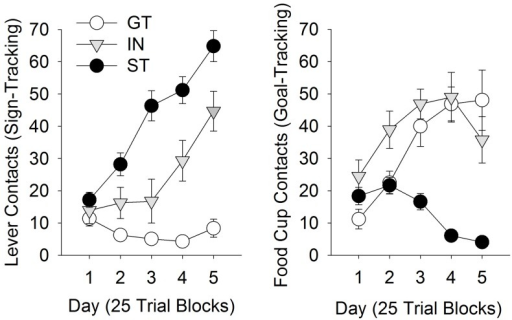 PCA behaviors using a compound CS.A) Sign-trackers (ST), goal-trackers (GTs), and intermediates (INs) were identified based on PCA using a compound tone/lever-cue. STs and GTs demonstrated either lever-directed (A) or goal-directed (B) behavior, respectively, during training.