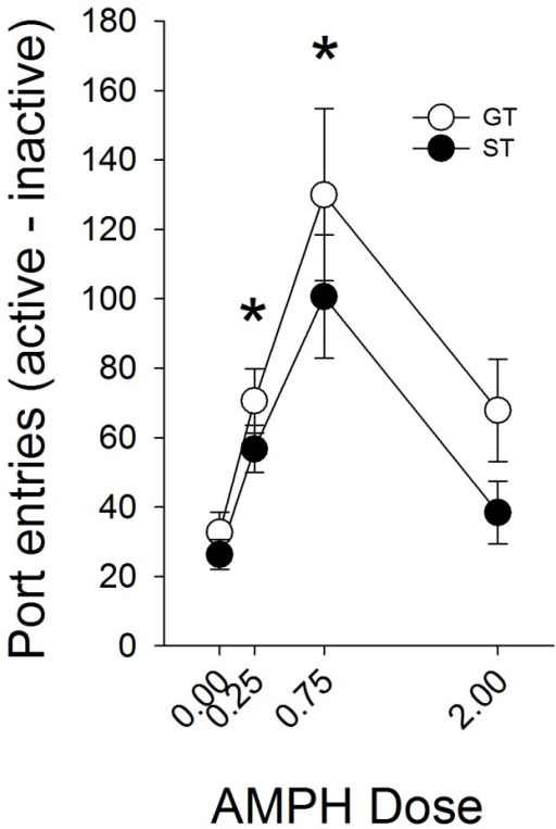 Amphetamine enhances the reinforcing efficacy of an auditory stimulus equally in sign-trackers (ST), goal-trackers (GT), and intermediates (IN).Amphetamine increased the number of nose-pokes into the active (reinforced by the tone-cue) port. Amphetamine did not have systematic effects on nose-poke responding into the inactive port. Data are represented as mean (± SEM). There were no significant differences between STs and GTs. Asterisks denotes a significant increase compared to the saline-treated rats (0.00 dose).