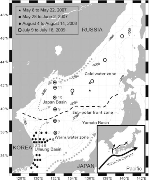 A map showing sampling stations for vertical dissolved organic carbon (DOC) profiles in the East/Japan Sea.Seawater samples for DOC analysis were collected with a Niskin sampler from 30 stations in the southern area and from 15 stations in the northern area of the EJS. The hydrological and biogeochemical surveys were conducted during four periods: May 8 to 22, 2007, on board the R/V M.A. Gagarinsky of the Pacific Oceanological Institute (POI), Russia; May 28 to June 2, 2007, onboard the R/V Tam-Yang of the Pukyung National University (PKNU), Korea; August 4 to 14, 2008, onboard the R/V HaeYang 2000 of the National Oceanographic Research Institute (NORI), Korea; and July 9 to 18, 2009, on board the R/V M.A. Lavrentyev of the POI, Russia. Map was created using Adobe Illustrator.
