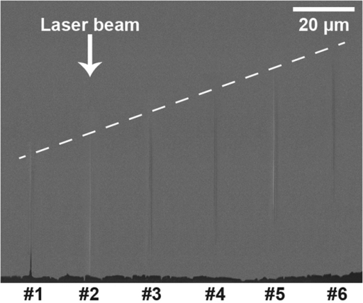 Side view SEM image of the sapphire sample with opened nanochannels using single pulse illumination.The opening was made by FIB milling, and the depth of beam focus was linearly varied by 4 μm between each pulse. The incident laser beam direction is marked as the white arrow, and the depth variation is indicated as the white dashed line. The energy per pulse was 2 μJ at 140 fs and a wavelength of 800 nm.