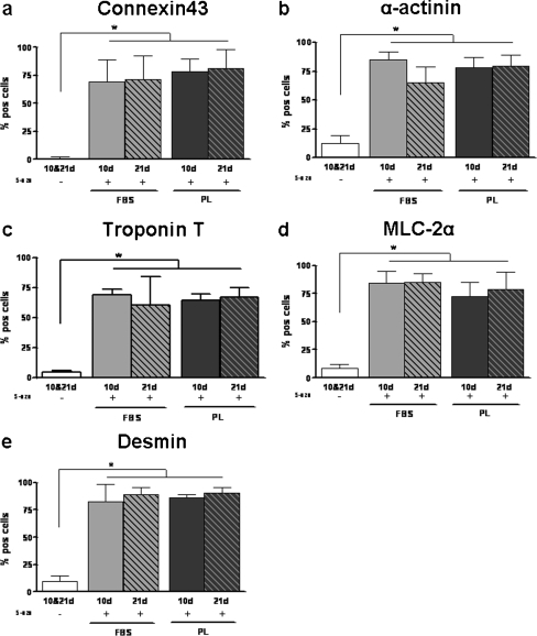 Differentation of FBS- and PL-cultured ASC towards cardiomyocytes. Number of FBS- and PL-cultured ASC positive cells for connexin43 (a), α-actinin (b), troponin T (c), MLC-2α (d), and desmin (e) when unstimulated (−) or stimulated with 5-aza-2-deoxycytidin ASC at days 10 and 21. Results are compared with non- stimulated ASC. No significant differences in presence of cardiac proteins were found between FBS- and PL-cultured ASC. Bars means ± SD. n = 6; *p < 0.05