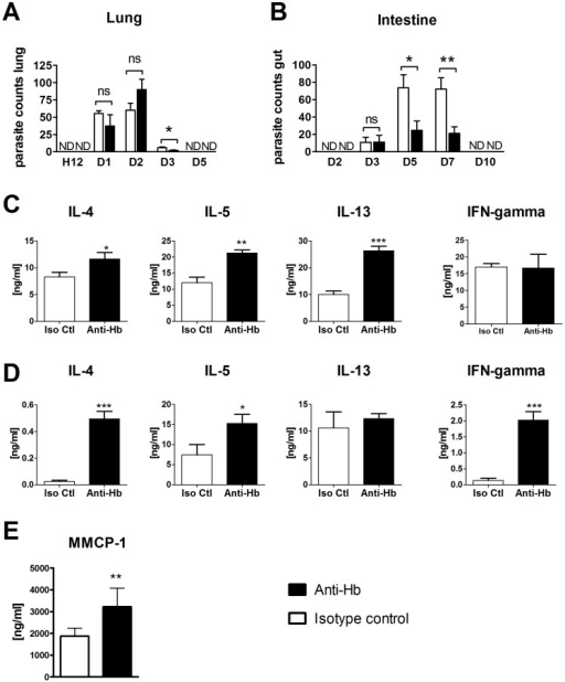 Passive immunization with Anti-Hb reduces worm burdens in Nippostrongylus brasiliensis infected mice.Mice (n = 5–8) were injected with 200 µg of 4E8g (Anti-Hb) at day −1 and infected with 500 N. brasiliensis L3 at Day 0. A) Worm burdens in the lung at different timepoints post infection. Bars represent the mean and error bars show standard error of the mean (SEM). B) Worm burdens in the intestine at different timepoints post infection. Bars represent the mean and error bars show SEM. C–D) Mesenteric lymph node cells from individual mice at day 7 (n = 5–8) were restimulated with C) anti-CD3 or D) N. brasiliensis somatic extract for 72 hours and cytokines were measured in the supernatant by ELISA. Bars represent the mean and error bars show SEM.E) Mouse mast cell proteases in serum at day 7. Statistical analysis was performed in GraphPad Prism using the unpaired Student's t test (*, p≤0.05; **, p≤0.01; ***, p≤0.001).