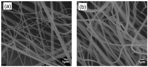 SEM images of the PLA-1%MWCNT fibers (a) before immobilization and (b) after immobilization of GOD using 0.125% GA.