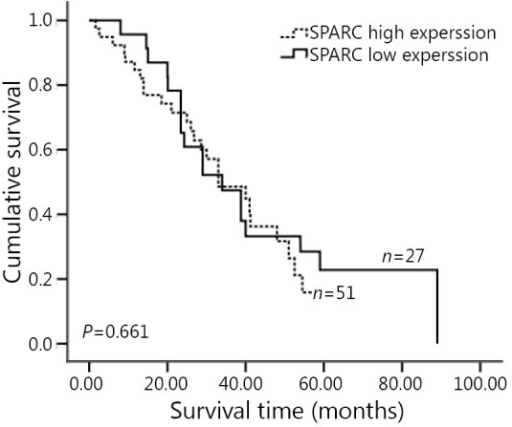 Overall survival of GC patients without preoperative chemotherapy according to the SPARC expression. Kaplan-Meier curves with univariate analyses (log-rank) for 78 GC patients without preoperative chemotherapy stratified as SPARC low expression group and SPARC high expression group; P=0.661. SPARC, secreted protein, acidic and rich in cysteine; GC, gastric cancer.