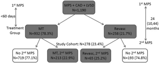 Study population (CAD, coronary artery disease; LVSD, left ventricular systolic dysfunction; MPS, myocardial perfusion scan; MT, medical therapy; Revasc, revascularisation).