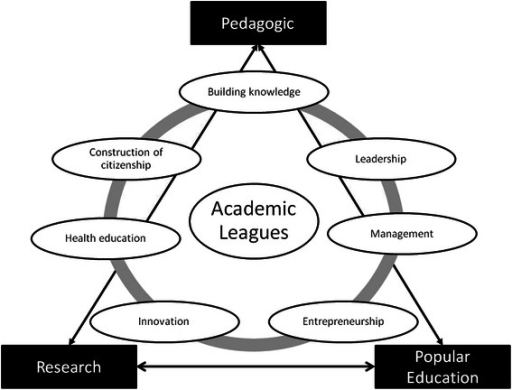 Skills developed through participation in Academic Leagues in three fields of university activities
