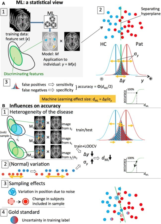 Overview of the statistical side of machine learning in neuroimaging data and the different factors that influence prediction accuracy. (A) 1. An ML algorithm is trained on a set of labeled, preprocessed, MRI scans, resulting in a model M that classifies patients and controls based on a discriminative subset of the features (feature vector). 2. The classification is done by an (optimal) separating hyperplane in the (high-dimensional) feature space. Application of the model to an individual scan yields an output value y that is proportional to the distance of the subject's feature vector to the plane: blue (HC) and red (Pat) dots. The y-values of all subjects form two distributions with widths σy and means separated by a distance Δy. 3. A threshold halfway the distributions separates the two groups; the overlapping parts below and above the threshold represent the false negatives and false positive, respectively. For symmetrical distributions, the accuracy can be estimated from the ML effect size, dML = Δy/σy. (B) 1, 2. Heterogeneity of the disease and (normal) variation in brain measures lead to lower Δy and larger σy and, thus, smaller effect sizes and classification accuracies. 3, 4. Sampling effects and noise and imperfect expert labeling cause uncertainties in the positions of the subjects and affect the separating hyperplane and (test) accuracy.