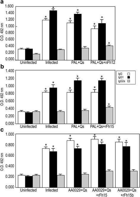 Serum-specific IgG, IgG1 and IgG2a antibody levels by ELISA 8 weeks post-challenge against soluble adult worm antigens from S. mansoni (SoSbAWA). Data presented as the mean ± standard error of the mean. BALB/c mice were vaccinated with their respective antigens formulated with the adjuvant adaptation (ADAD) vaccination system with the natural immunomodulator PAL or the synthetic AA0029 and challenged with 150 cercariae of S. mansoni. a Vaccination with PAL+Qs+nFh12+PAL; b Vaccination with PAL+Qs+rFh15; c vaccination using AA0029+Qs+rFh15 and AA0029+Qs+rFh15b. O.D., optical densities; *P < 0.05 compared to uninfected controls