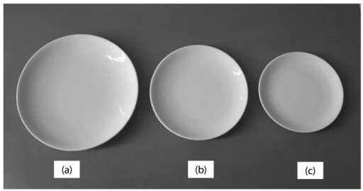 (a) Large (28 cm), (b) medium (23 cm), and (c) small (19 cm) plates used in the study