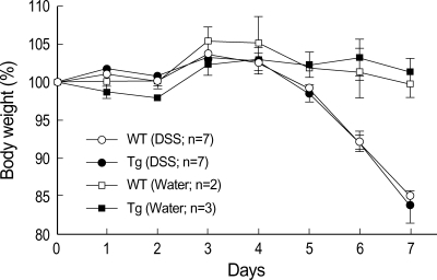 Overexpression of CIITA expression in T cells did not affect DSS-mediated colitis. Wild type (WT) and CIITA-transgenic (Tg) mice were treated with 2.5% DSS for 7 days and body weight was monitored every day. DSS significantly reduced body weight for 7 days; this decrease in body weight was not affected by CIITA expression in T cells. Each point represents average weight data. The standard errors are indicated.