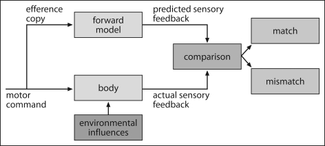 "Prediction in motor control. Based on the efference copy of the motor command, a forward model is formulated and used for predicting the consequences of one's own actions. These predictions are compared with the incoming sensory input which can result either in a ""match"" in case predictions were correctly formulated, or a ""mismatch"", signaling an error in prediction."