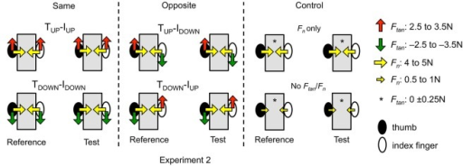 Experimental conditions (Experiment 2). The experimental conditions of Experiment 2 are shown in the same format as those shown in Figure 2 for Experiment 1. The only difference between Experiments 1 and 2 is that for the latter experiment, subjects were required to exert the same thumb and index fingertip normal and tangential forces across reference and test hands (see text for more details).