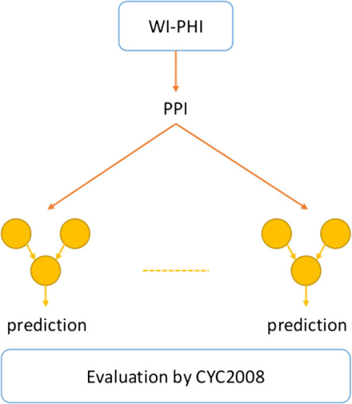 Overview of evaluation of trained classifiers by all known PPIs. This figure shows an overview of evaluation of the classifiers trained in a cross-validation by all PPIs in the WI-PHI database.