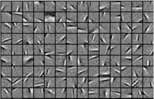 Well-trained connecting weight matrixes.We selected 126 connecting weight matrixes (i.e., RFs) randomly. Each square describes an oriented and localized Gabor-like RF of a specified V1 neuron. The gray pixels in each square represent zero, the lighter pixels correspond to positive values, and the darker ones indicate negative values. The localized, oriented, and band-pass RFs of neurons are somewhat like Gabor filters which is consist with that of accurate predictions of V1 RFs.