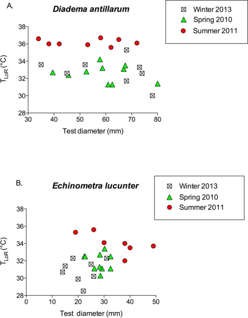 TLoR as a function of test size in (A) Diadema and (B) Echinometra collected in the winter, spring, and summer.None of the slopes is significantly different from 0. Diadema: pwinter = 0.396; pspring = 0.528; psummer = 0.818. Echinometra: pwinter = 0.783; pspring = 0.689 psummer = 0.10. Note that the x-axes are scaled differently.