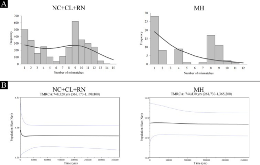 Demographic history based on the mtDNA control region sequences from populations NC+CL+NC and MH.A) Mismatch distributions. Observed and expected distributions are shown with bars and lines, respectively. B) Bayesian skyline plots. The black line is the median estimated and the blue lines show the 95% highest posterior density (HPD) intervals. NC: Necochea; CL: Claromecó; RN: Río Negro; MH: Monte Hermoso.