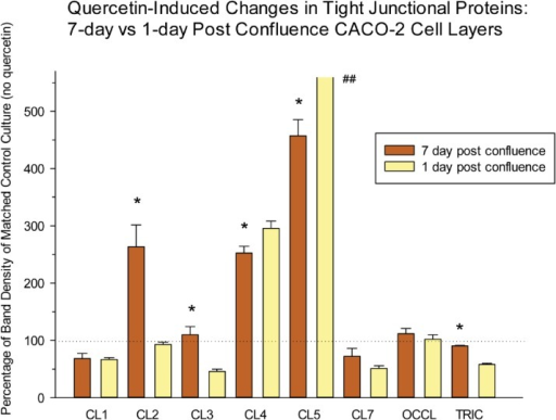 Differential effect of quercetin treatment on the tight junctional proteins of 7-day vs. 1-day post-confluent CACO-2 cell layers.1-day and 7-day post-confluent CACO-2 cell layers in Falcon 75 cm2 culture flasks were refed with control medium or medium containing 400μM quercetin 48 hrs before harvesting in lysis buffer. Further steps were performed as described in Table 1. Data represents the percentage of band density of the no-quercetin control for that CACO-2 cell layer. Data shown is expressed as the mean ± standard error for an n = 3 cell layers in all cases. * indicates P < 0.05 for 1-day vs. 7-day changes in TJ protein (Student's t test, two-tailed.