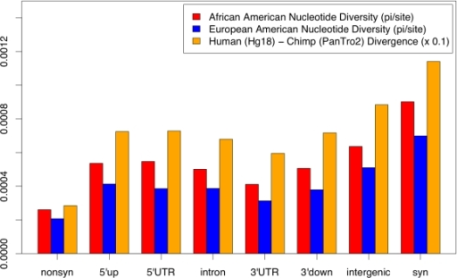 Polymorphism and divergence across pooled sites in African and European Americans.