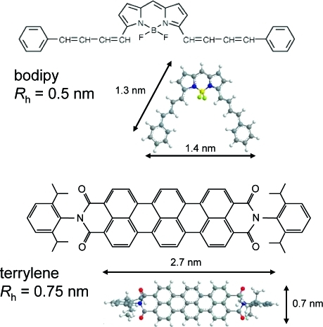 nmr diffusion coefficient study of steroid cyclodextrin inclusion complexes