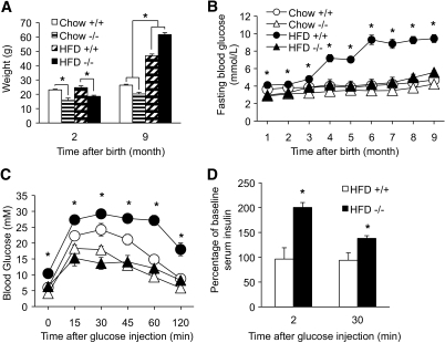 RIPcre+ Ptenfl/fl mice showed maintained glucose metabolism and in vivo glucose stimulated insulin secretion after prolonged HFD while demonstrating drastic weight gain. A: Weight of RIPcre+ Pten+/+ (+/+) and RIPcre+ Ptenfl/fl (−/−) mice at the start of HFD (2 months of age) and after HFD (9 months of age) with chow-fed RIPcre+ Pten+/+ and RIPcre+ Ptenfl/fl mice at the same time points. B: Fasting blood glucose of RIPcre+ Pten+/+ and RIPcre+ Ptenfl/fl mice fed either chow or HFD for 7 months (n >7). C: Glucose tolerance tests of RIPcre+ Pten+/+ and RIPcre+ Ptenfl/fl mice after 7 months of either chow or HFD feeding (n >7). D: in vivo glucose stimulated insulin secretions of RIPcre+ Pten+/+ and RIPcre+ Ptenfl/fl mice after 7 months of either chow or HFD feeding (n >3). *P < 0.05. The results are presented as mean ± SE.