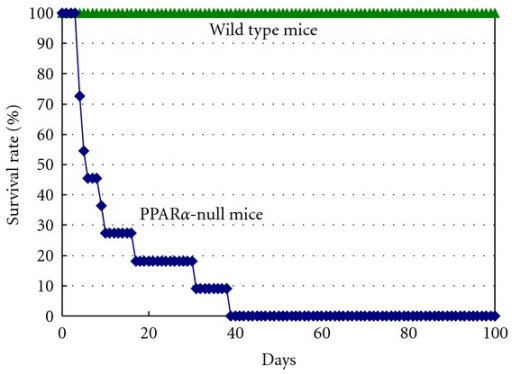 Survival curve of normal and PPARα- mice on sesame diet. Male PPARα- mice on the sesame diet were followed until all  mice (n = 12) died. None of wild-type mice (n = 4) on the sesame diet or the PPARα- mice on normal diet died during these period. Time 0 is the day of starting the experiment using age-matched (14 weeks) mice on the sesame diet.