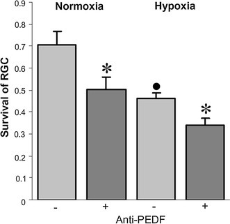 Effect of neutralizing anti-PEDF antibody Müller cell-promoted RGC survival in co-cultures is suppressed by a neutralizing anti-PEDF antibody in both normoxic and hypoxic conditions (n = 4; anti-PEDF vs. control cultures, *P < 0.05; control hypoxic versus normoxic control cultures, •P < 0.05). Co-cultures were maintained in the presence of an anti-PEDF antibody (+) or normal goat immunoglobulin in control cultures (−)