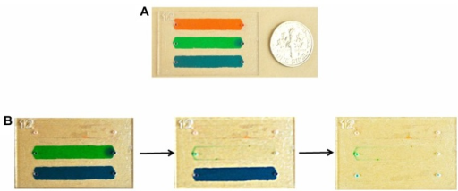 (A) Three different food dye solutions were injected into microchannels before performing wash steps. (B) Images of channels before and after wash steps indicated that food dye was removed from microchannels at a flow rate of 2 μL/minute.