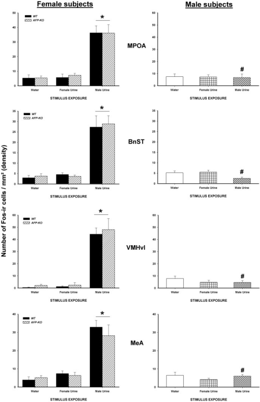 Exposure to male urinary odors increases the number of Fos-ir cells in WT and AFP-KO females but not in WT males.Mean +/− SEM number of Fos-ir cells per mm2 (density) in several brain regions which are part of the accessory olfactory pathway in male (intact) and female WT and AFP-KO female (ovariectomized and implanted with an E2 capsule) mice exposed to either water, estrous female or male urinary odors. * P<0.05 different from females that were exposed to water or to estrous female urine. # P<0.05 different from females of the same genotype exposed to intact male urine.