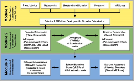 BiomarCaRE multi-modular concept. From biomarker selection and assay development (Module 1) to biomarker measurements and statistical analyses (Module 2) to clinical translation and economic assessment (Module 3). Module 1: Established and emerging biomarkers are prioritised according to their association with CVD risk, novel biomarkers are selected based on pre-existing non-publically available-omics datasets. Assay development is guided by SMEs and optimised for medium to high-throughput measurement. Module 2: The predictive value of biomarkers is assessed separately in population and disease based cohorts in a two phase approach; phase I assessment and phase II validation. Module 3 assesses the clinical utilisation of BiomarCaRE risk panels in clinical trials for their interaction with risk lowering therapy and develops a decision-analytical model to estimate long term cost-effectiveness of a primary or secondary preventive strategy guided by biomarker testing