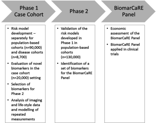 Overview of data analyses performed in phases 1 and 2 of BiomarCaRE