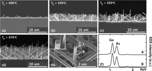 SEM images of GaAs NWs on (100) silicon substrate with different growth temperatures. (a) 600°C, (b) 630°C, (c) 650°C, (d) 670°C, (e) close-up view of a GaAs NW core, and (f) EDX spectra taken at the middle [B] and top [A] of a GaAs NW core (see Figure 1e). The inset of Figure 1e shows the clear formation of a hexagonally shaped NW.