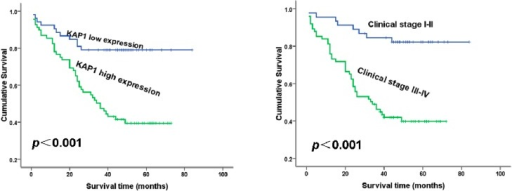 The prognostic effects of KAP1 expression levels in ovarian cancer patients. (A) Patients with high KAP 1 expression showed significantly shorter overall survival than those with low KAP 1 expression (p < 0.001) and (B) Patients with stage I–II disease showed significantly longer overall survival than those with stage III–IV disease (p < 0.001).
