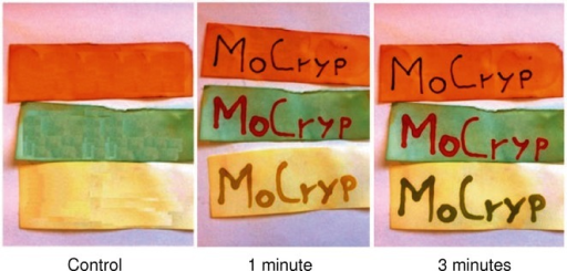 Writing with trichocyanines generated in situ. Left: the control shows filter paper strips dipped into three different aldehyde solutions in methanolic p-toluenesulfonic acid (top: 4-dimethylaminocinnamaldehyde, middle: ferulic aldehyde, bottom: 4-dimethylaminobenzaldehyde). Middle: image taken immediately after writing on the stripes with a methanol solution of 3-phenyl-2H-1,4-benzothiazine. Right: image 3 min after writing.