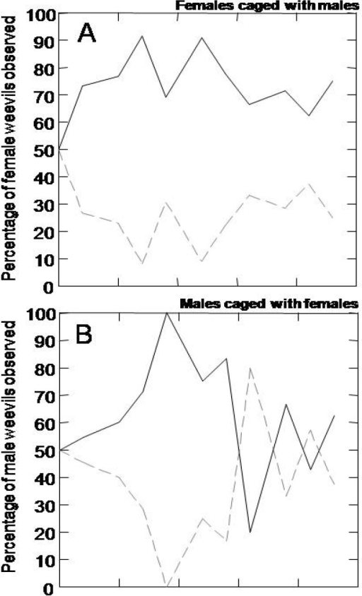 Female and male choice of resistant versus susceptible host tree genotypes. Weevil distribution on susceptible (solid lines) and resistant (dotted lines) trees in choice experiments. (A) The percentage of female weevils when mixed with male weevils; (B) male weevils when mixed with female weevils; and (C) male weevils only, observed on the susceptible and on the resistant genotypes at each sampling day.