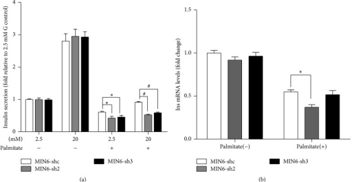 Nr2e1 silencing exaggerates lipotoxicity-induced beta cell dysfunction. (a) Insulin secretion in response to 2.5 and 20 mM glucose in MIN6-shc, MIN6-sh2, and MIN6-sh3 cells preincubated during 48 h with or without 0.5 mM palmitate. Results are means ± SD of 3 independent experiments. ∗P < 0.05 compared to MIN6-shc in 2.5 mM glucose. #P < 0.05 compared to MIN6-shc in 20 mM glucose. (b) Insulin mRNA levels of MIN6-shc, MIN6-sh2, and MIN6-sh3 cells incubated during 48 h with or without 0.5 mM palmitate. Data represent means ± SD of three observations. ∗P < 0.05 compared to MIN6-shc incubated with palmitate.