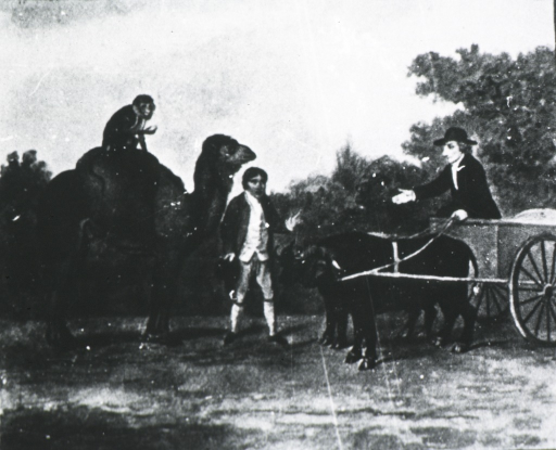 <p>John Hunter in the Buffalo Cart he used in Piccadilly in 1792.</p>