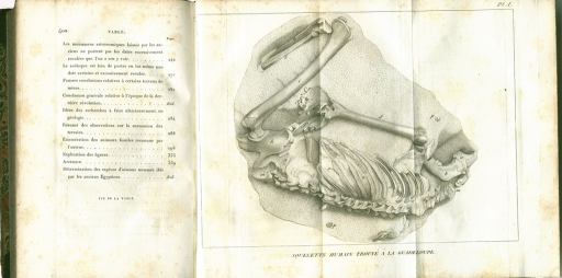 <p>Image of p. 400 from Discours, with table of contents, adjacent to plate foldout which shows the fossilized human skeleton from Guadaloupe.  Parts of the skeleton are identified with letters, without a legend. Cuvier studied the origin and geological location of these remains in 1818 and reported his findings in Discours.</p>