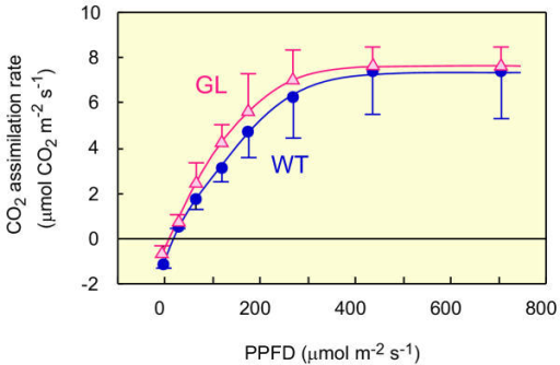Light-response curves for the rate of photosynthetic CO2 assimilation in WT and GL. Shade-leaves, which exhibited identical green coloration in both WT and GL, were used for measurements. Light intensities of irradiation were changed from high to low. (•, blue), WT; (Δ, red), GL. Points are the means of three (•) or four (Δ) separate measurements ± SD.