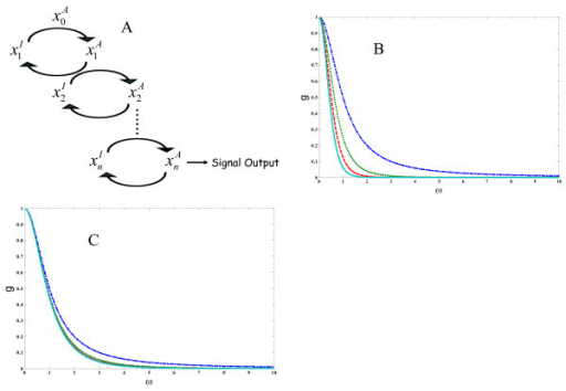 Filtering of high frequency signals. Time dependence of signal integration in a linear biochemical cascade. a.) the sequential activation of multiple stages in a signaling cascade. Superscripts (I) and (A) denote inactive and active forms of each chemical species and are dropped from the equations in the text. b.) same kinetic constants, all kinetic constants are taken to be:  c.) a positive gradient of activation/deactivation rates keeping  fixed.  = 1.0,  = 3.3,  = 6.6,  = 10.0. c.) plots of gn(ω) for n = 1, 2, 3, 4 with successively different values of  while keeping  fixed ( = 1.0,  = 3.3,  = 6.6,  = 10.0).