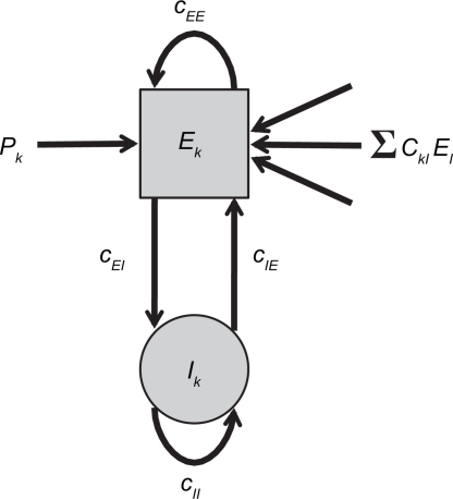 Network of Wilson–Cowan models. At each node k a neural population containing excitatory and inhibitory units (Ek and Ik, respectively) yields self-sustained oscillations. Other nodes are connected to the excitatory unit by means of ΣCklEl. Note that this (mean-field) coupling is scaled by a scalar η – see Eq. 1 for details.