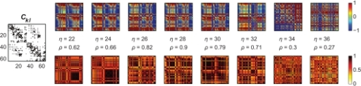 Amplitude ratios [upper row; log(Rl/Rk)] and functional connectivity (lower row) of the Hagmann network using again a bimodal distribution of Pk. The left most panel is again the structural network Ckl; we here used Pk ∈ [−0.25,…,−0.20] and [0.20,…,0.25]. As in the small-world case, localized clusters of synchronized nodes emerge dependent on the overall coupling strength η. These clustered patterns apparently disagree with the underlying anatomical network (most left panel); cf. Figure 3, right column, second row, green dashed lines.