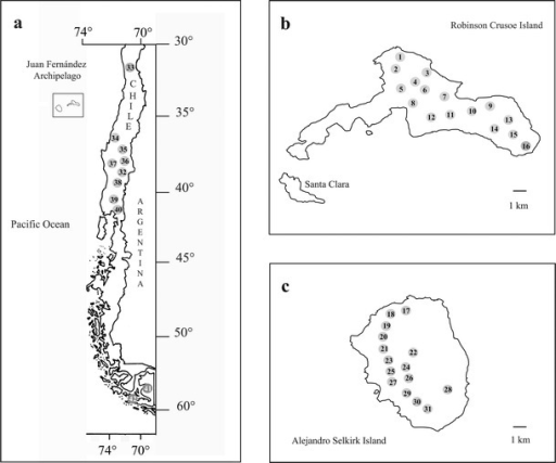 Geographical position of populations sampled of Drimys winteri and D.andina in continental Chile (a) and Drimys confertifolia in Robinson Crusoe (b) and Alejandro Selkirk (c) Islands