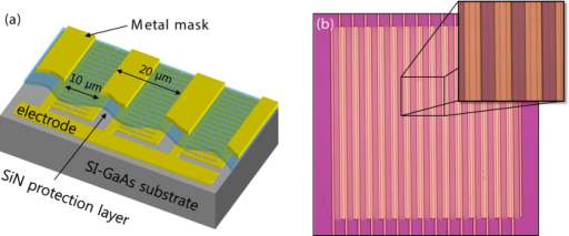 (a) Structure of the large-aperture PCA adopting SNG nano-electrode. (b) Optical microscope image of the fabricated device.