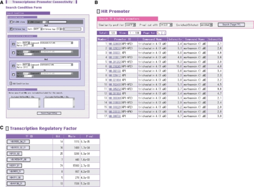 Screenshot from the search engine for enrichment of the putative transcription factor binding sites (A). The figure exemplifies the search for common TF binding sites appearing in the promoters of genes with which more than 10 Solexa sequences are associated and the relative expression levels are more than 2-fold elevated both by the 1 μm trichostatin A treatment and by the 1 μm wortmannin treatment (B). From the resultant list of the enriched sites, the link can be followed to the main viewer to retrieve further detailed information (C).